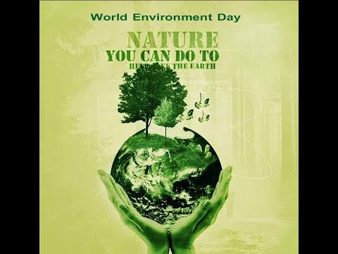 World Environment Day: Lahore faces major concerns due to pollution