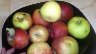 Как сделать яблочный уксус дома!