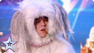 David Vs Dog: canine creativity challenge | Britain's Got Talent 2015