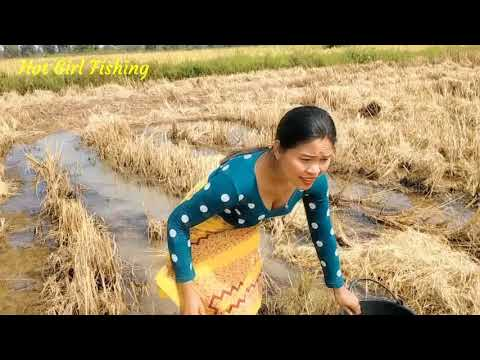 Cast Net Fishing For A Lot Of Fish Catch / Best Hand Fishing Video