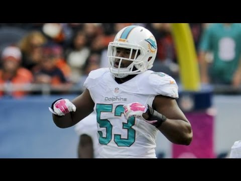 #53 LB JELANI JENKINS ULTIMATE 2014 SEASON HIGHLIGHTS