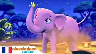 Paw Patrol : La Pat' Patrouille   Lila l'éléphant   NICKELODEON JUNIOR