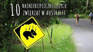 10 najniebezpieczniejszych zwierząt w Australii