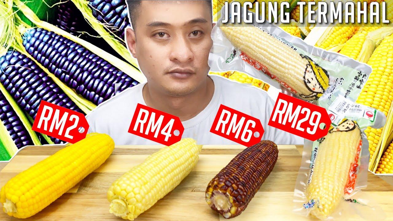 JAGUNG PALING MAHAL Aku Pernah Cuba RM29 Sebatang (Mukbang Malaysia) HOKKAIDO SWEET CORN