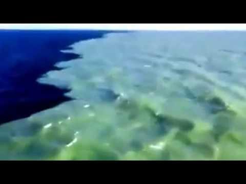 البرزخ الذي ذكر في القرآن الكريم Youtube