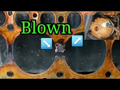 How To Tell If Your Head Gasket Is Blown Bodgit And Leggit Garage