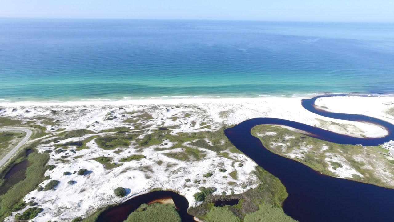 Explore Grayton Beach State Park In