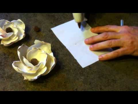 Shellcraft Tutorial: How to Make Magnolia Flowers from Shells