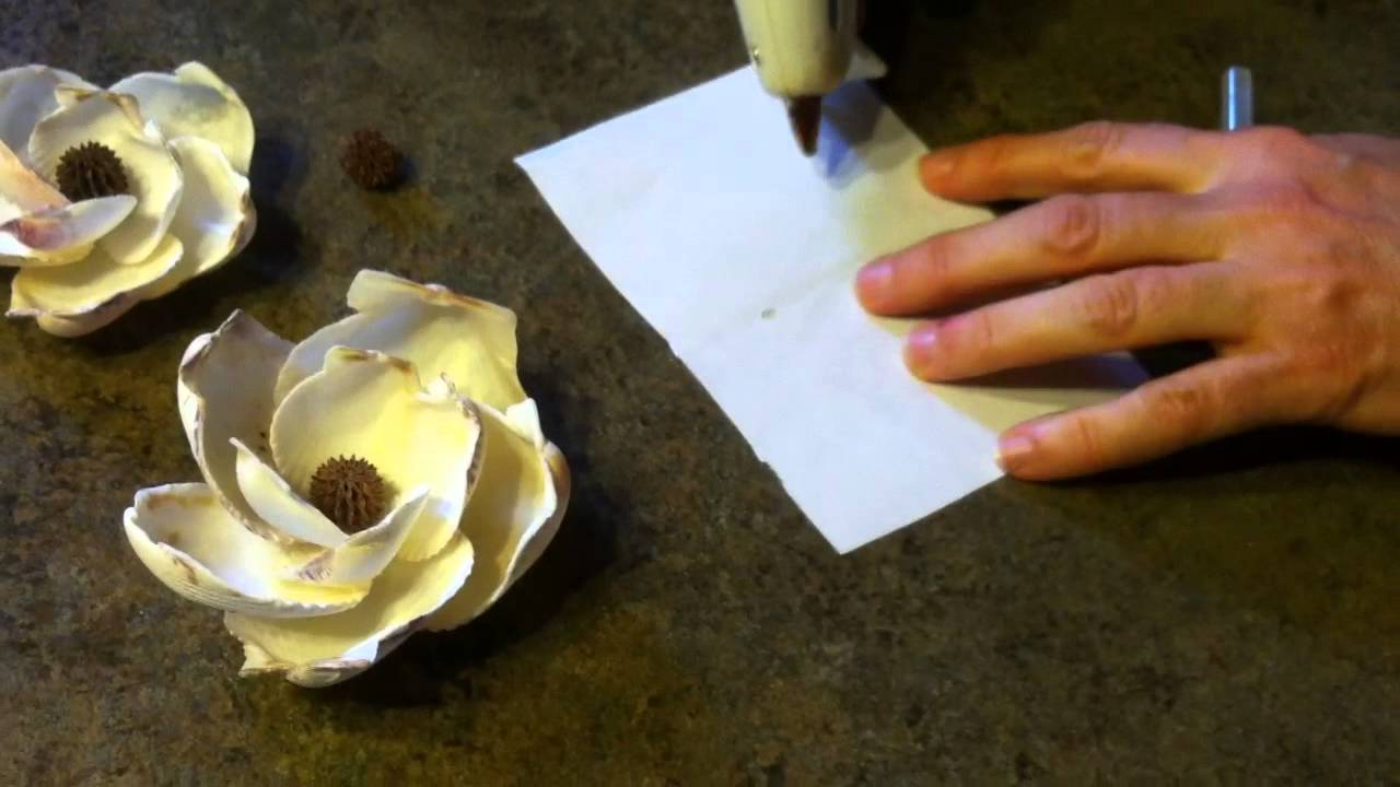 Shellcraft tutorial how to make magnolia flowers from for What are shells made of
