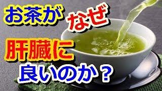 知ってますか?お茶が肝臓に良い理由!脂肪肝に効くお茶の効果!