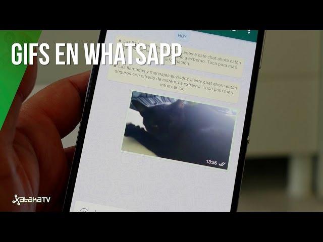 Como Enviar Gifs Por Whatsapp
