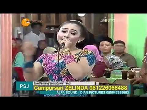 JURAGAN EMPANG - ZELINDA Campursari Terbaru