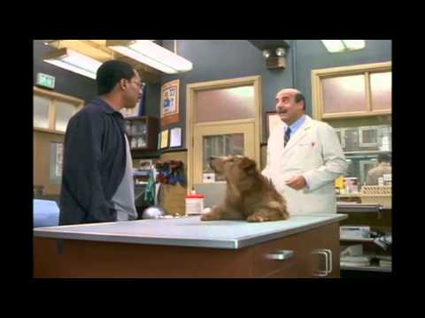 dr dolittle full movie in tamil free download