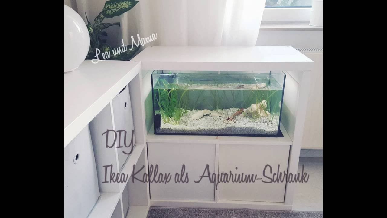 diy aquarium schrank aus kallax regal youtube. Black Bedroom Furniture Sets. Home Design Ideas