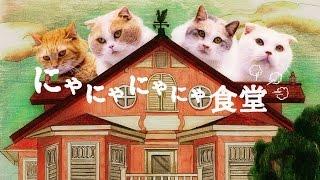 au WALLET「にゃにゃにゃにゃ食堂」 史上初!ネコ語ドラマ(ヒューにゃんドラマ) thumbnail