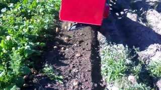 Картофелекопалка 2(, 2013-08-26T13:59:42.000Z)