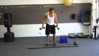 The Fat Melting Workout | Fat Melting Exercises at Home by HASfit Weight Loss Systems | 061711
