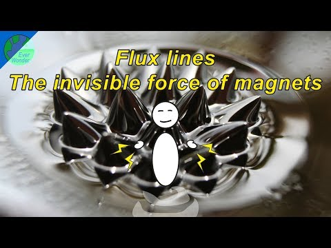 Flux lines - The invisible force of magnets