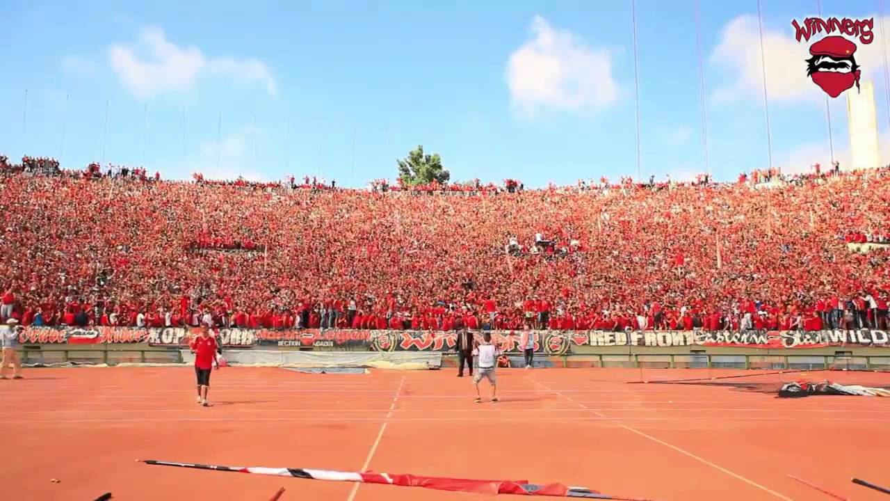 chants wydad