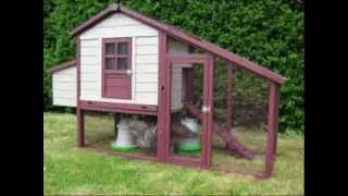 Chicken Coop Guide - Top Converter - Build Chicken Coop