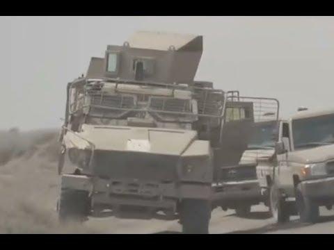 خسائر فادحة للحوثيين في جبهات الساحل الغربي  - نشر قبل 4 ساعة