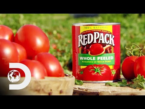 CANNED TOMATOES | How It's Made