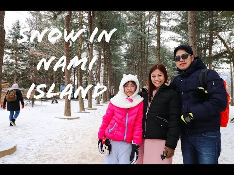 snow-in-nami-island-and-petite-france!