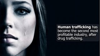 Why the MSM Is Ignoring Trump's Sex Trafficking Busts