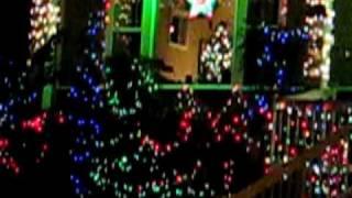 philippine lantern Thumbnail