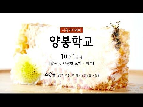 [시흥아카데미] 양봉학교 10강1교시 「합군 및