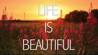 Life is beautiful full movie