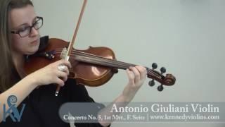 The Antonio Giuliani Violin - excerpt from Concerto No.5, 1st mvt. | KV