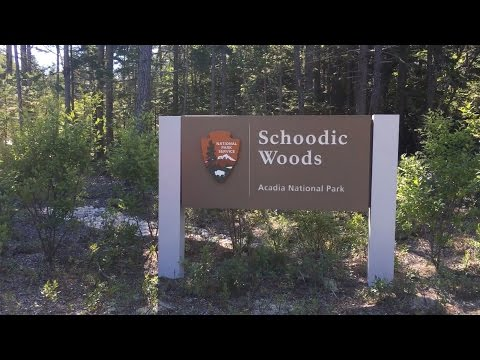 Meet Schoodic Woods: The Newest Addition to Acadia National Park