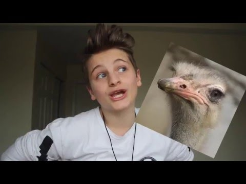 peoples reactions vs mine  Mark Thomas Duhitzmark