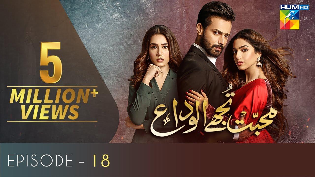 Download Mohabbat Tujhe Alvida | Episode 18 | Eng Subs | Digitally Powered By Master Paints | HUM TV | Drama