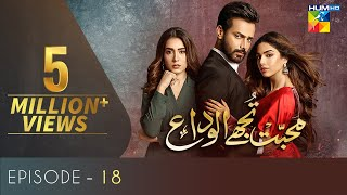 Mohabbat Tujhe Alvida  Episode 18  Eng Subs  Digitally Powered By Master Paints  HUM TV  Drama