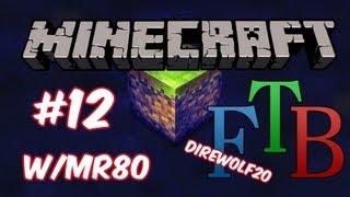 Minecraft Direwolf20 FTB ModPack [Ep12]- New Bee Area And Beealyzer!!!