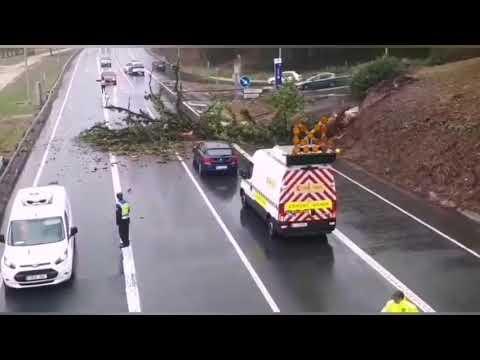 Un árbol cae sobre la N-VI y provoca enormes atascos en Lugo