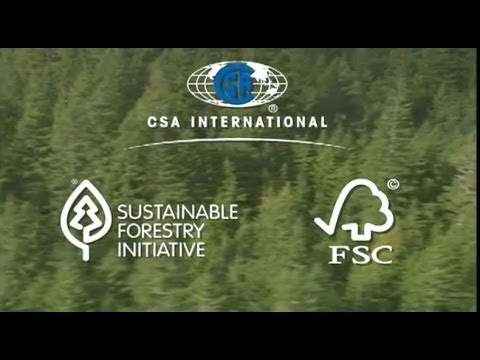 Forestry In Canada:  Forest Certification With Peggy Smith