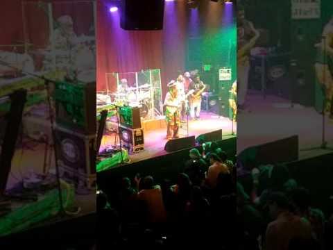 Steel Pulse Live in Santa Cruz Feb 10 2017