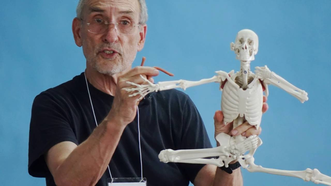 ANATOMY IN CLAY® Centers In Action: Bayer X-SCI Science Camp 2016 ...