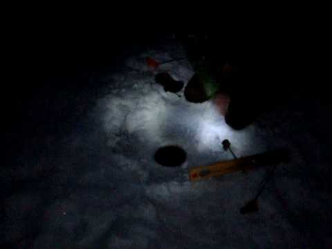 ice fishing walleye at night youtube