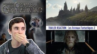 Les Animaux Fantastiques: Les crimes de Grindelwald – Trailer Reaction –Fantastic Beasts l Ben Hpts