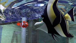 Video Sample Finding Nemo 2003 BRRip 1080p x264 Dual AudioEnglish 5 1 + Hindi 5 1  prisak  {HKRG} download MP3, 3GP, MP4, WEBM, AVI, FLV April 2018
