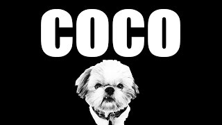 I'm In Love With Da Coco (the Shih Tzu Remix)