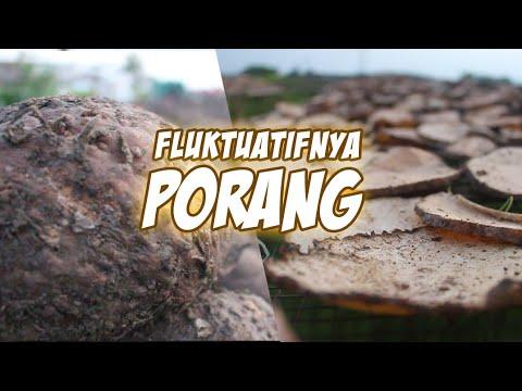 FLUKTUATIF PORANG MEMPENGARUHI HARGANYA