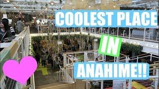 Vlog 2016/1/23  アナハイムを散策!! ビログ