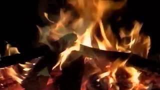 【癒し系】自然音 夜通し焚き火 'Bonfire all night long '