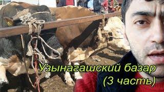Узынагашский скотный рынок (3 часть финал)