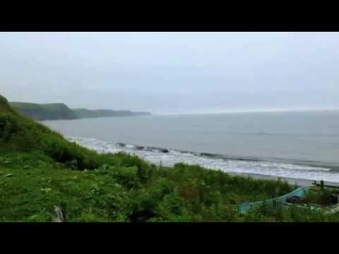 Sound views - Pacific Ocean of rough seas · Nature Sound of Nature